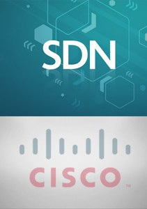 sdn category